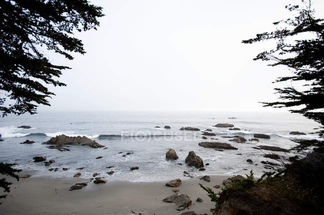 Beautiful seascape and rocks on sandy beach in fog, california, united states of america — Stock Photo