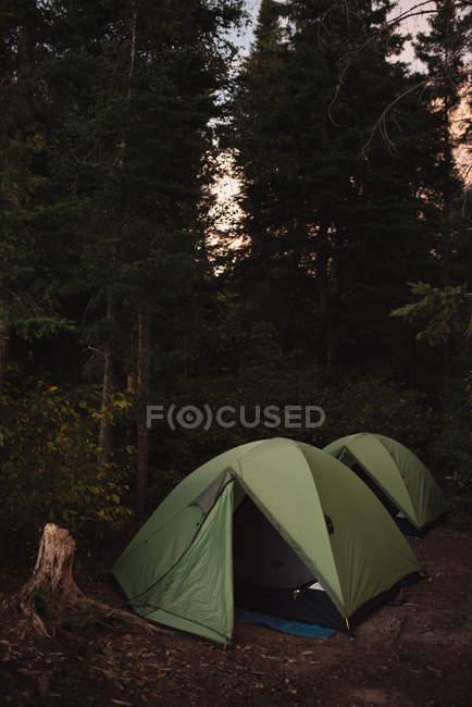 Zwei Zelte aufgeschlagen im Wald, Sonnenuntergang — Stockfoto