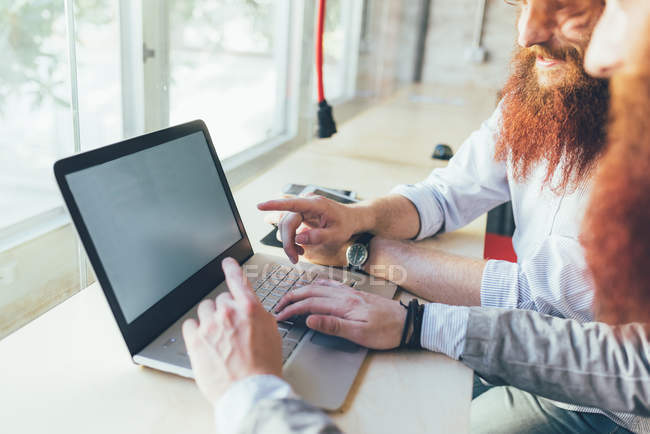 Cropped shot of male twins working on laptop in office — Stock Photo