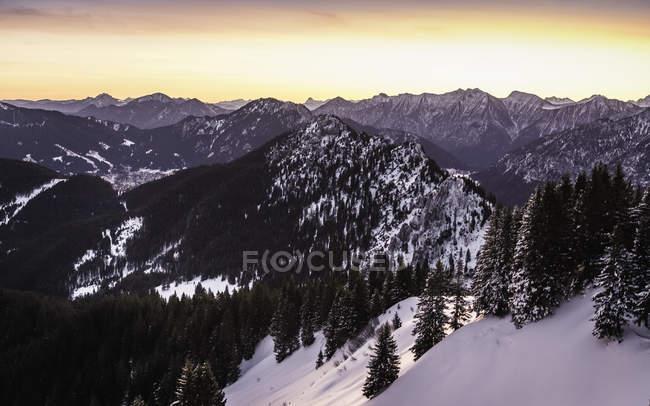 Schneebedecktes Gebirge mit Kiefern bei Sonnenaufgang — Stockfoto