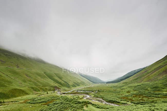 Verde della vegetazione tra le splendide montagne al giorno nuvoloso, coda grigio mares, Scozia — Foto stock