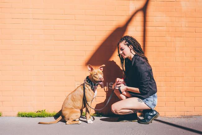 Молода жінка з дреди, Скрадливий перед помаранчеві стіни пітбультер'єр — стокове фото