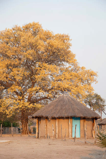 Dorf von Seronga im Okavango-Delta — Stockfoto