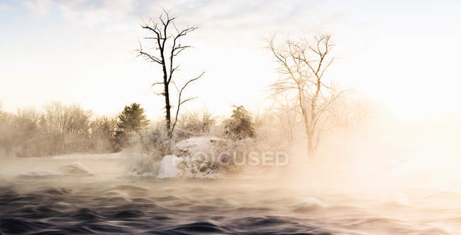 Niebla del balanceo a través de paisajes nevados - foto de stock