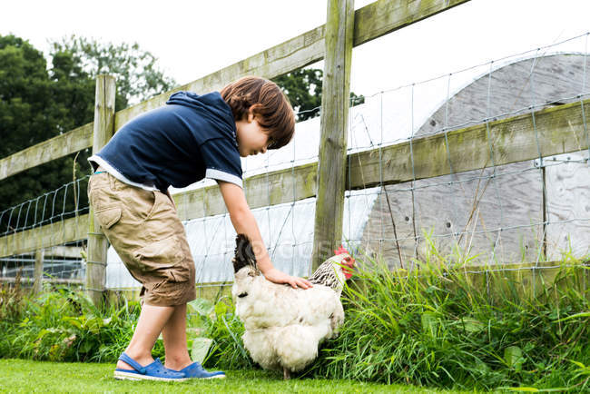 Boy petting chicken at farm — Stock Photo