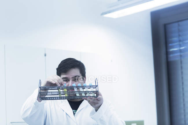 Scientist examining test tubes in rack — Stock Photo