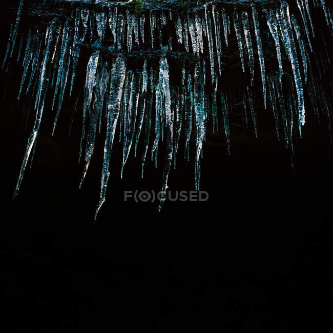 Low angle view of icicles on black background, close-up — Stock Photo