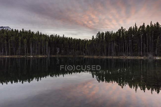 Alberi di pino e cielo di tramonto che riflette in acqua di lago — Foto stock