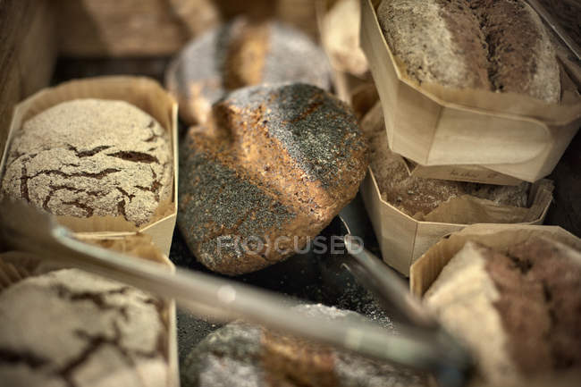 Close up shot of packed bread loaves — Stock Photo