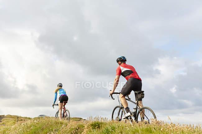 Вид сзади на велосипедистов, проезжающих мимо луга — стоковое фото