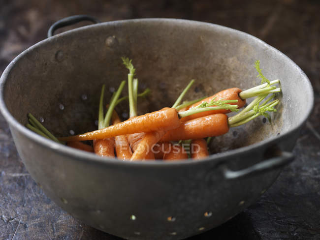 Fresh organic vegetables, baby carrots in metal colander — Stock Photo