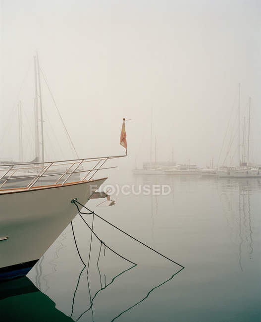 Boats moored in harbour — Stock Photo