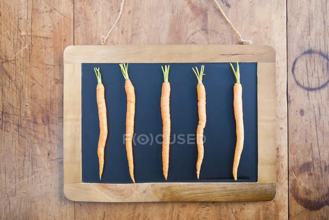 Cinque carote su lavagna nera, nature morte — Foto stock