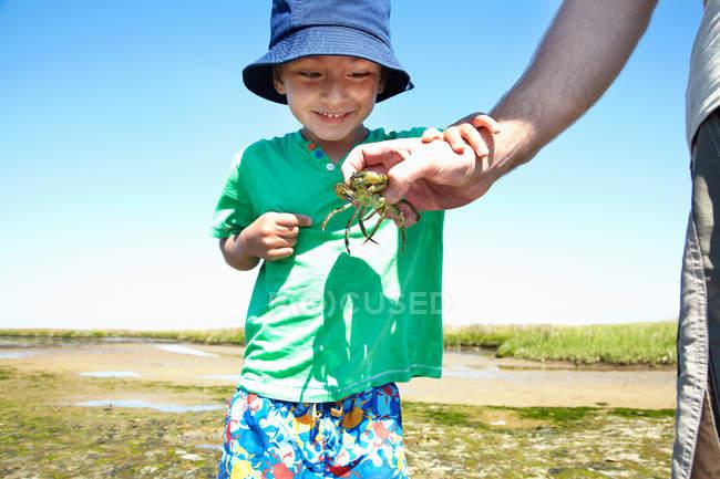 Мальчик рассматривает краба в руках отцов — стоковое фото