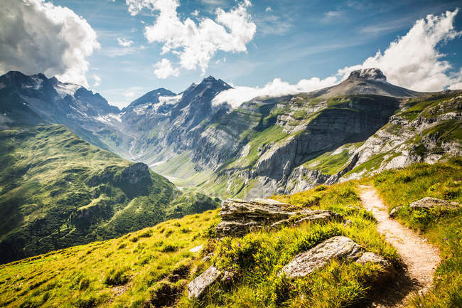 Chemin de terre sur la colline rurale herbeuse — Photo de stock