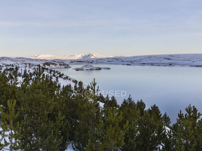 Повышенные вид озера и заснеженные холмы с елки — стоковое фото