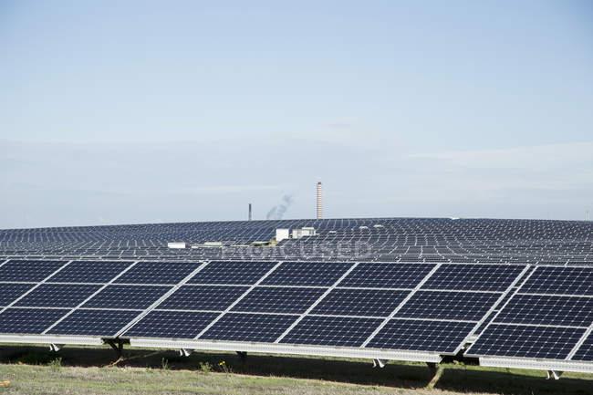 Поле солнечных батарей под голубым небом — стоковое фото