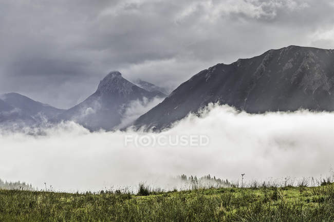 Mist above green field and distant mountains under cloudy sky — Stock Photo