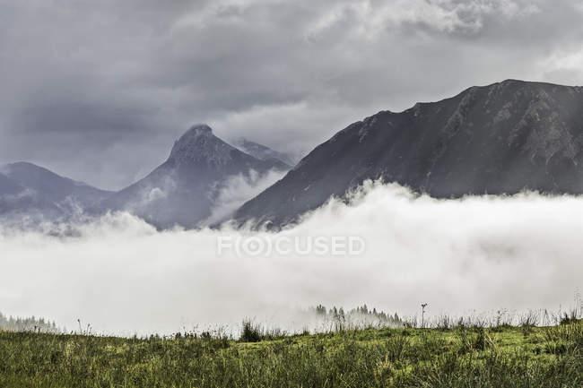 Nebel über dem grünen Wiese und fernen Bergen unter bewölktem Himmel — Stockfoto