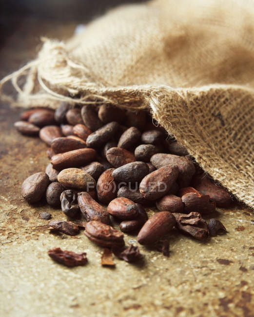 Granos de cacao y saco, primer plano disparo - foto de stock