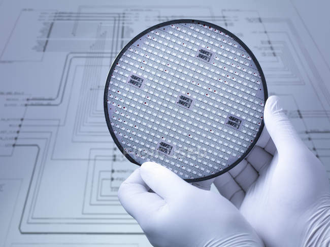 Gloved hands holding silicon wafer in laboratory, close up — Stock Photo