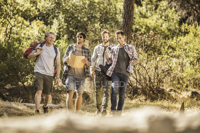 Four male hikers with map on forest hike, Deer Park, Cape Town, South Africa — Stock Photo