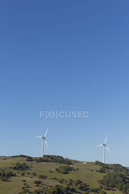 Éoliennes sur le champ sous le ciel bleu — Photo de stock