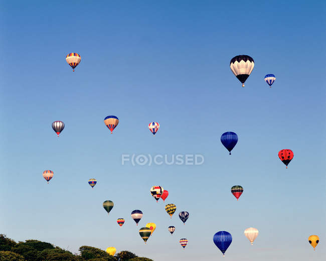 Colourful balloons in air — Stock Photo