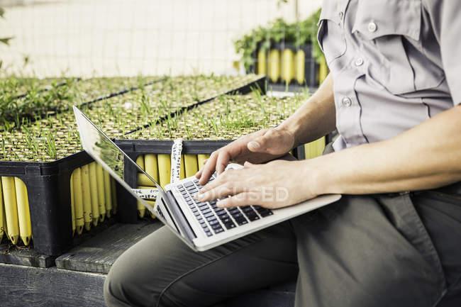 Schuss des Wissenschaftlers Tippen auf Laptop in Pflanze Wachstum Forschung Zentrum Gewächshaus beschnitten — Stockfoto