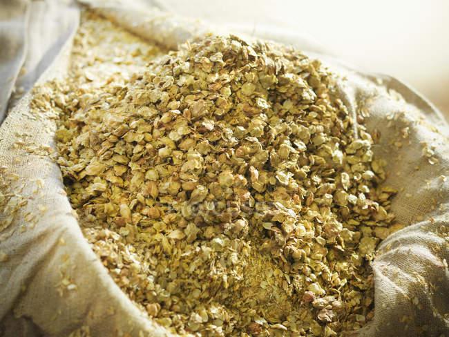 Vista de cerca del saco de lúpulo de cebada en la cervecería - foto de stock