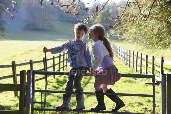 Девушка шепчет брату-близнецу, когда перелезает через ворота — стоковое фото
