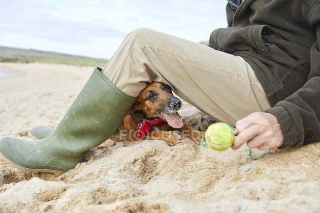 Uomo e cane da compagnia seduti sulla spiaggia, Constantine Bay, Cornovaglia, Regno Unito — Foto stock