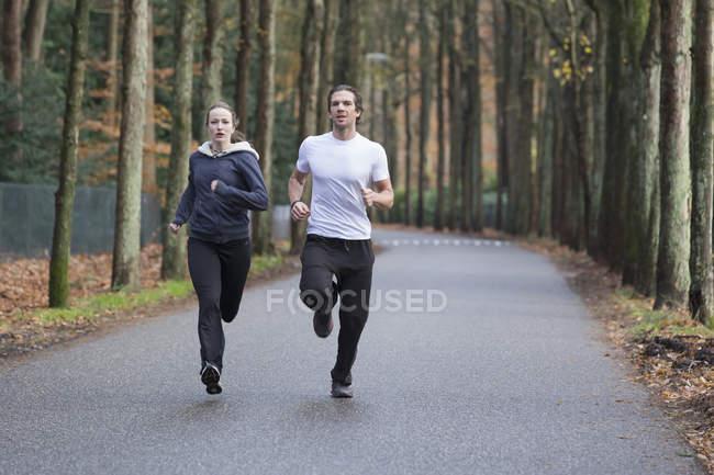 Пара бегущих через лес — стоковое фото