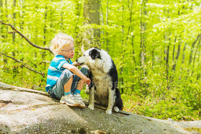 Boy sitting with dog in forest — Foto stock