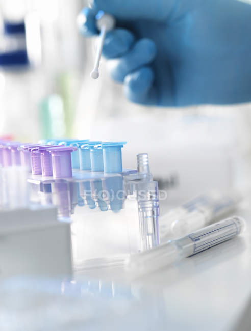 Scientist preparing DNA swab for analysis in laboratory for forensic — Stock Photo