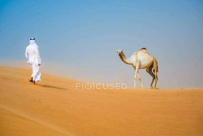 Middle eastern man wearing traditional clothes walking toward camel in desert, Dubai, United Arab Emirates — Stock Photo