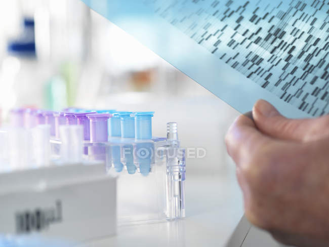 Researcher holding DNA  gel during genetic experiment in laboratory — Stock Photo