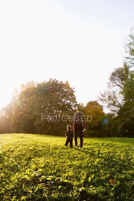 Vista posteriore di madre e figlio che camminano nel parco — Foto stock