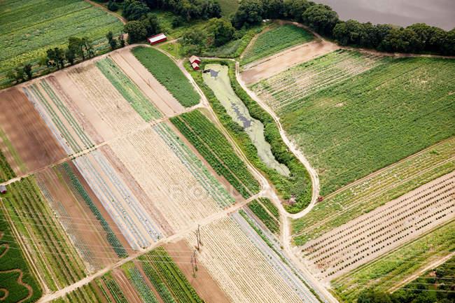 Vista aerea di modelli nei campi, Stati Uniti d'america — Foto stock