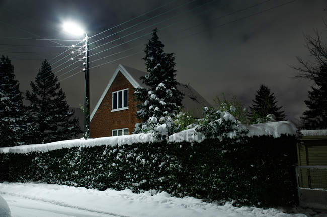 Snow covered bush and house — Stock Photo