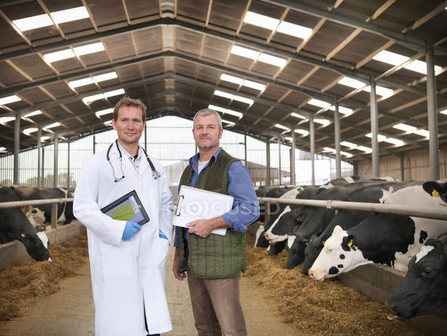 Portrait of vet and farmer with clipboards in barn with cows on dairy farm — Stock Photo