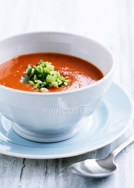 Tomato soup with leek garnish — Stock Photo