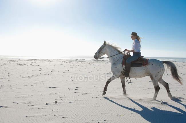 Женщина верхом на лошади на песке — стоковое фото