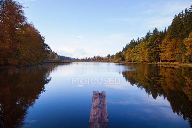 Trees reflected in rural lake — Stock Photo