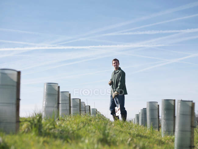 Man In Field With Young Trees — Stock Photo