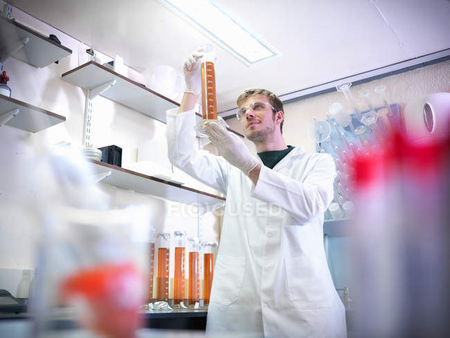 Expert analyzing brewery lab samples — Stock Photo