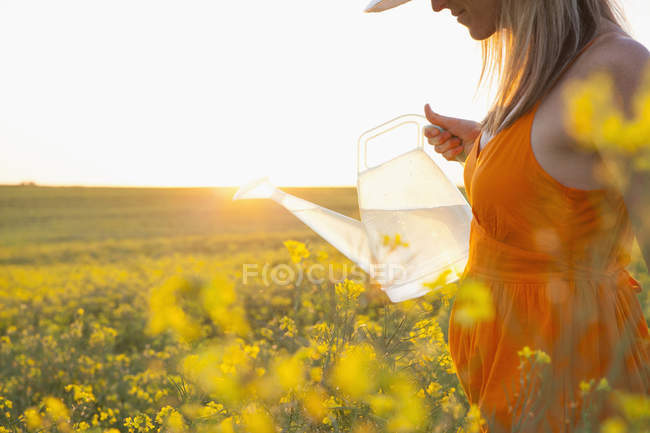 Cropped view of mid adult woman watering canola with transparent watering can — Stock Photo