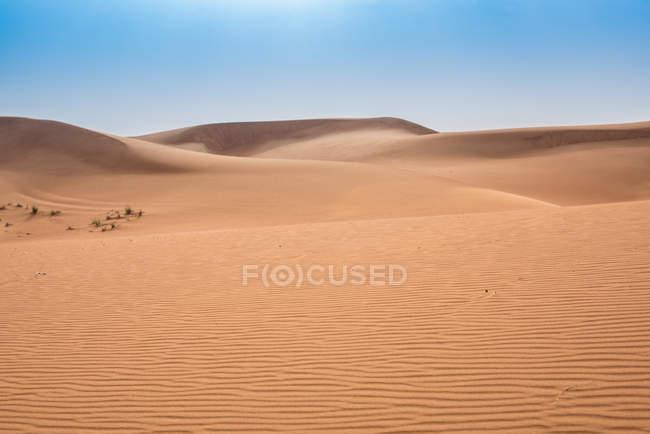Empty desert landscape and blue sky, Dubai, United Arab Emirates — Stock Photo