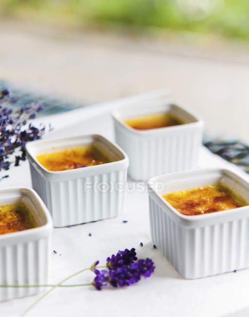 Четыре блюда карамелизированным заварные кремы на столе — стоковое фото