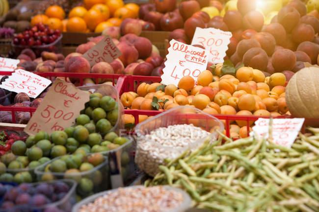 Cierre toma de frutas y verduras para la venta - foto de stock